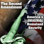 Second Amendment Pic
